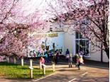 Schulgebäude der Janosch-Grundschule Troisdorf